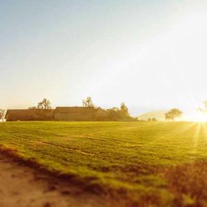 Regionale Zutaten für Zappendorfer Wurstprodukte